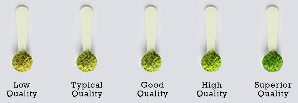 matcha-comparison.jpg