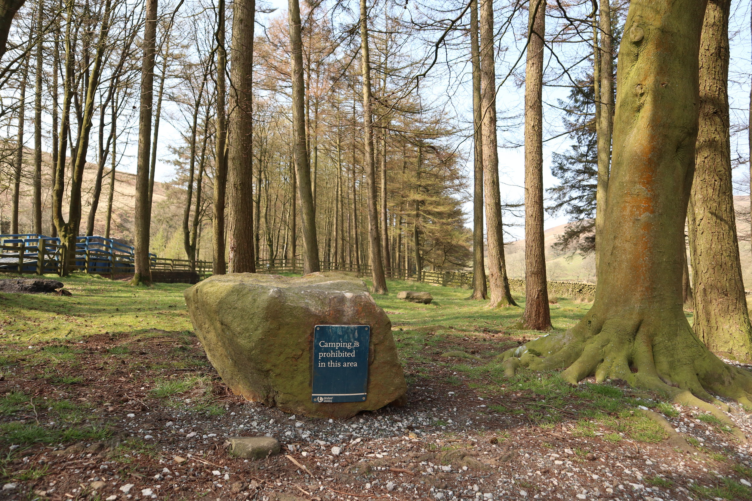 Forest Of Bowland 4.JPG