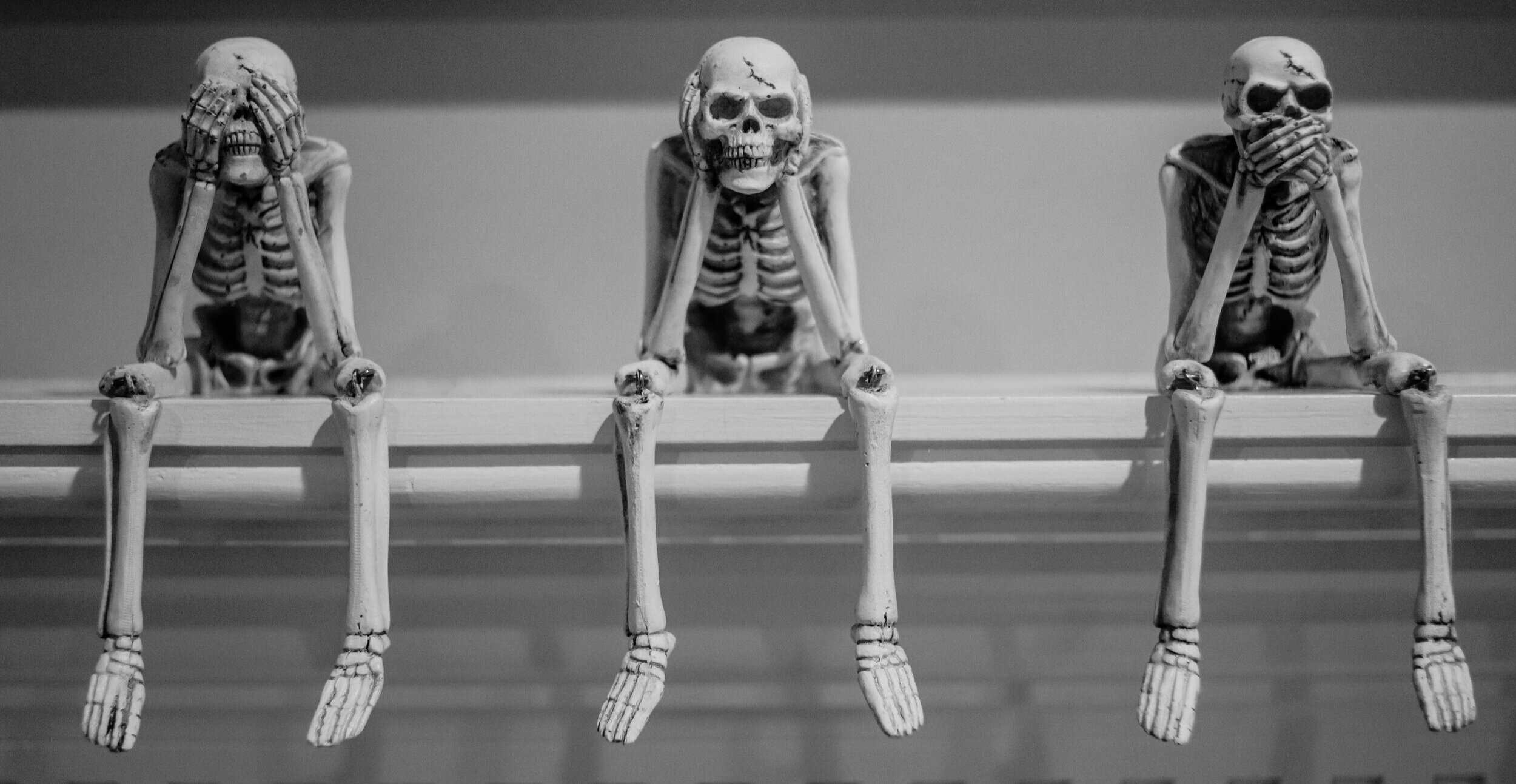 Movementum+Bones