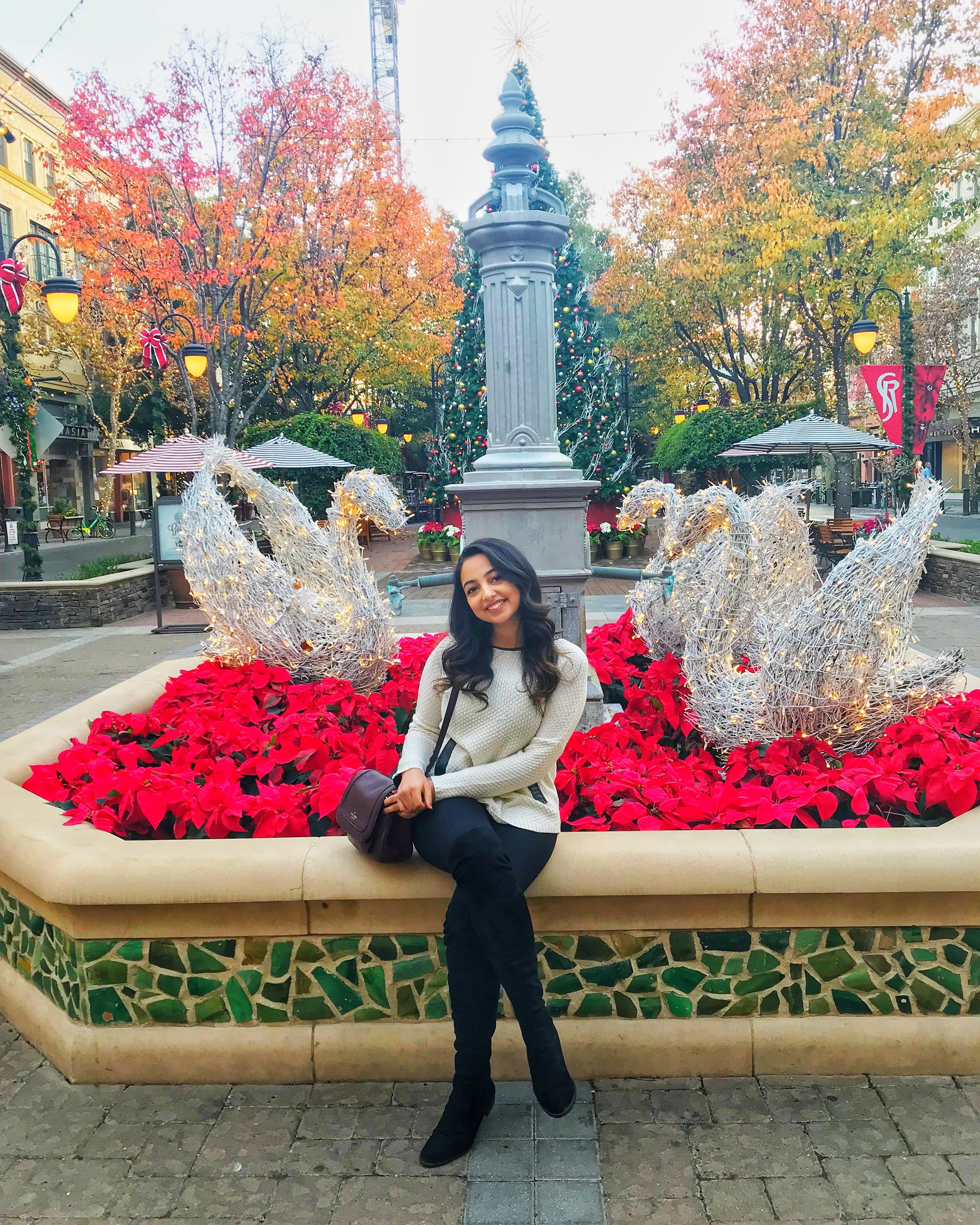 - Hi and Welcome to my Blog! I'm a 22 year old UC Davis Alumni and currently work as a Technical Consultant at Workday! I have been a dancer since I was five years old, and even performed at the 2017 International Indian Film Awards (IIFA) in New York!As a result I am constantly trying to balance both my passions of dance, entertainment and technology! I love motivating other new graduates to find new opportunities in the workforce or related to their passions so that they can achieve their goals and do all they set their mind to! Feel free to reach out with any advice, questions, or comments about anything related to dance, entertainment, fashion, or technology, I would love to hear from you!Love,Srishti