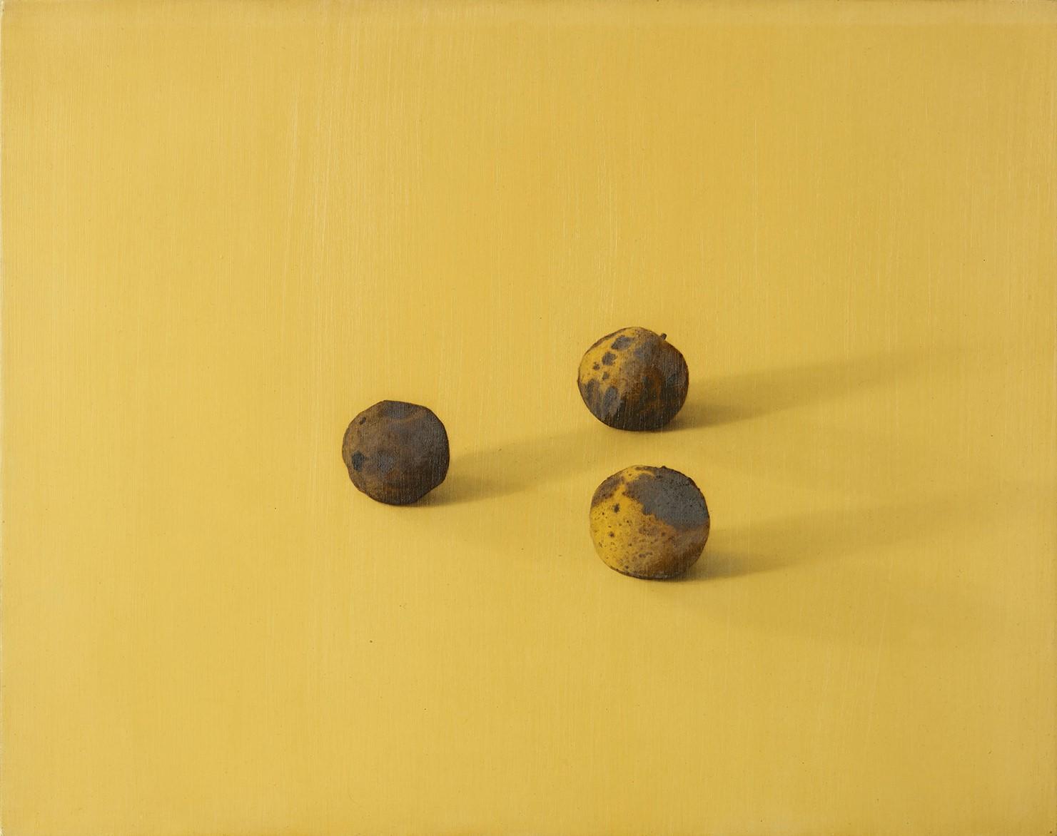 Black Walnuts, 2012, 14x18, o/l