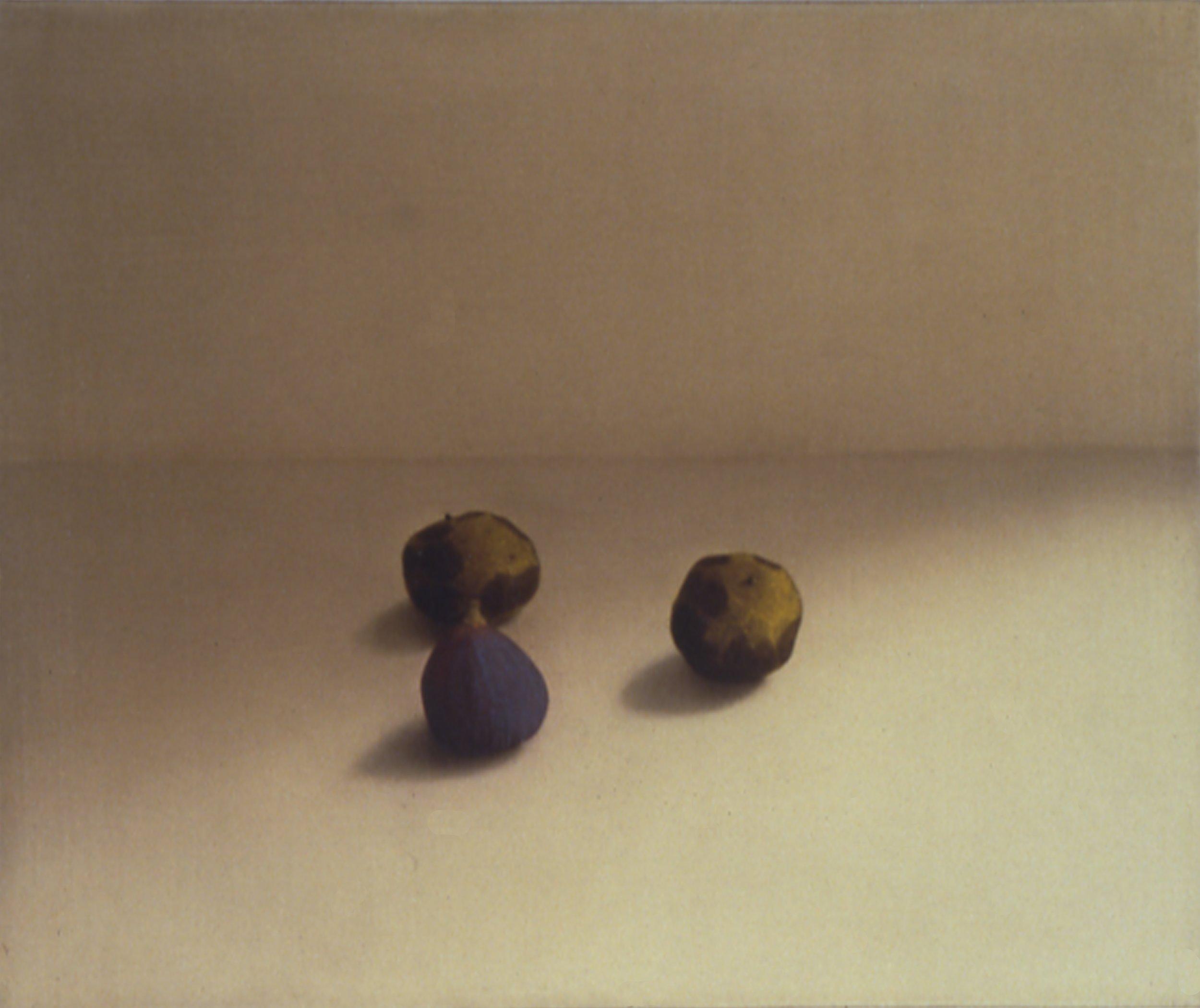 Black Walnuts and Fig, 1997, 15x18, o/l