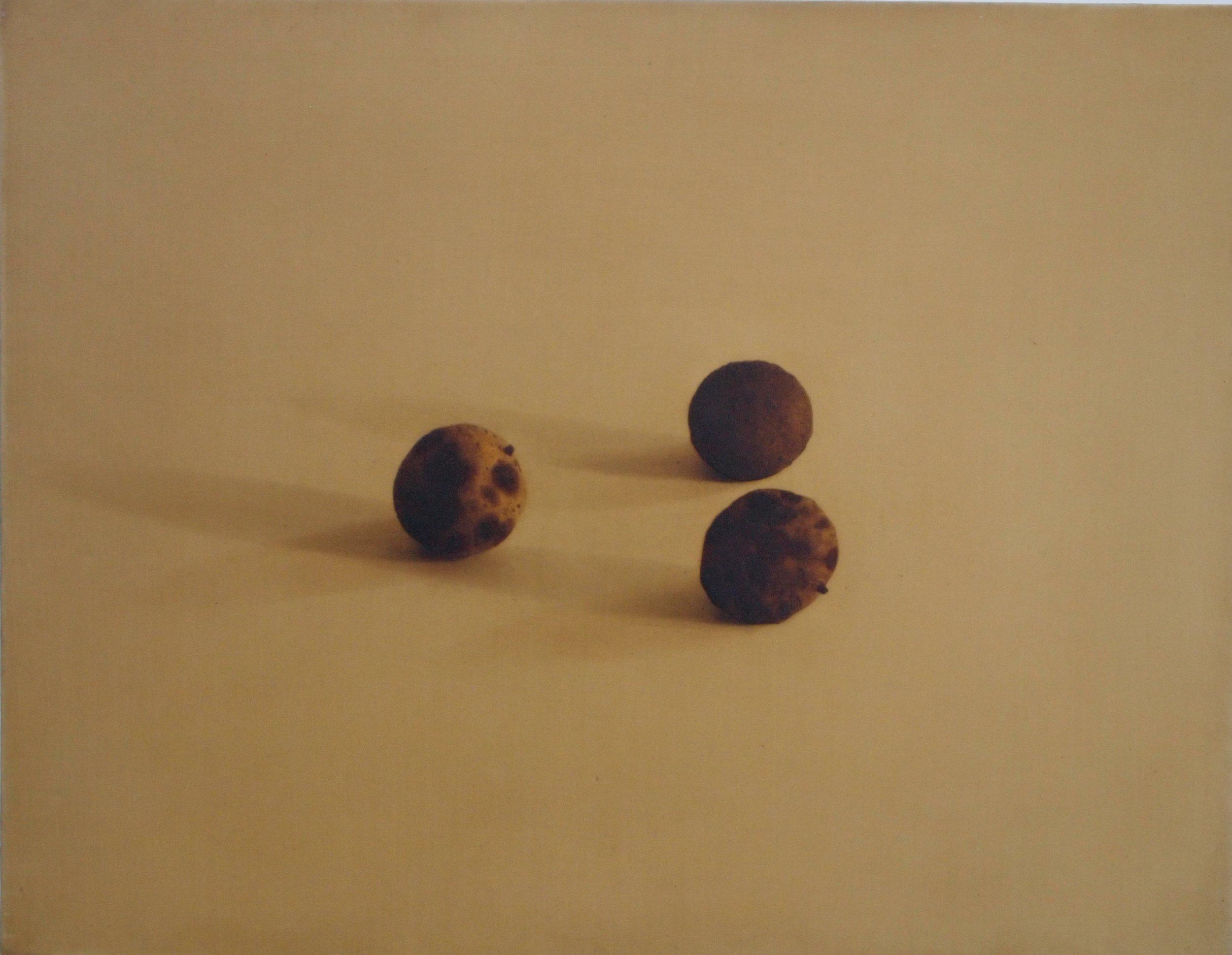 Black Walnuts, 1995, 14x18, o/l