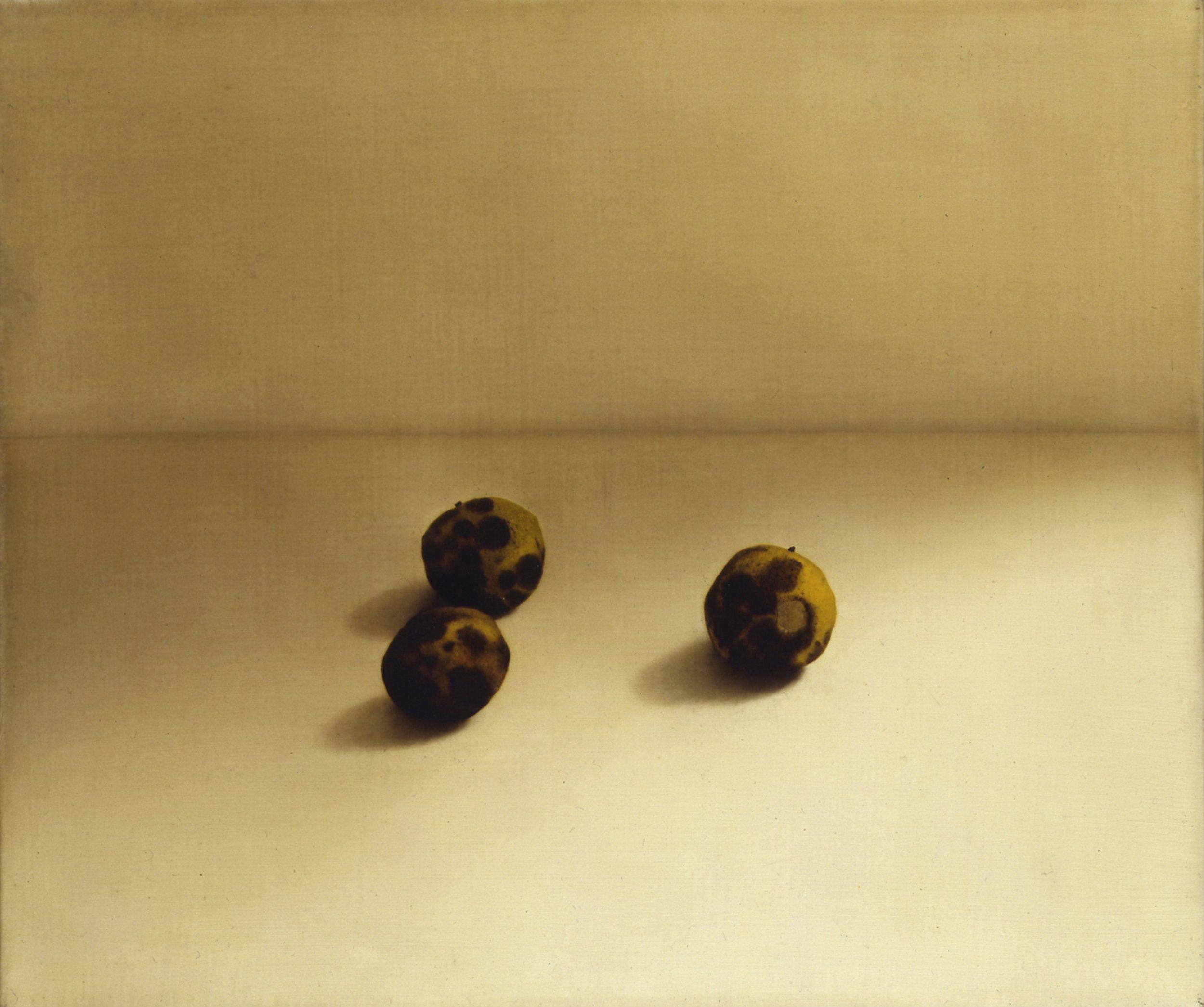 Still Life (three black walnuts), 1994, 15x18, o/l