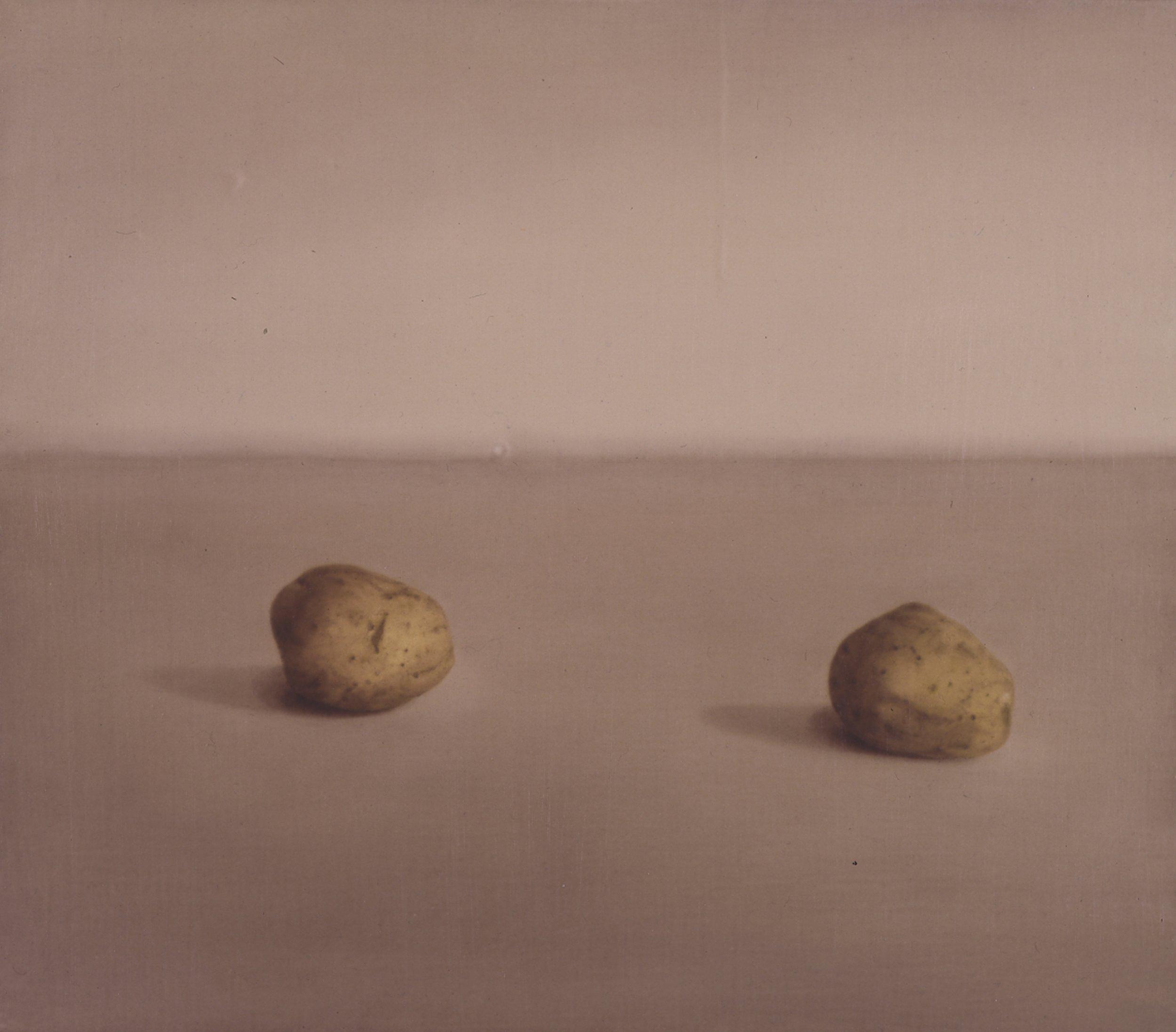 Still LIfe (lighter version), 1993, 14x16, o/l