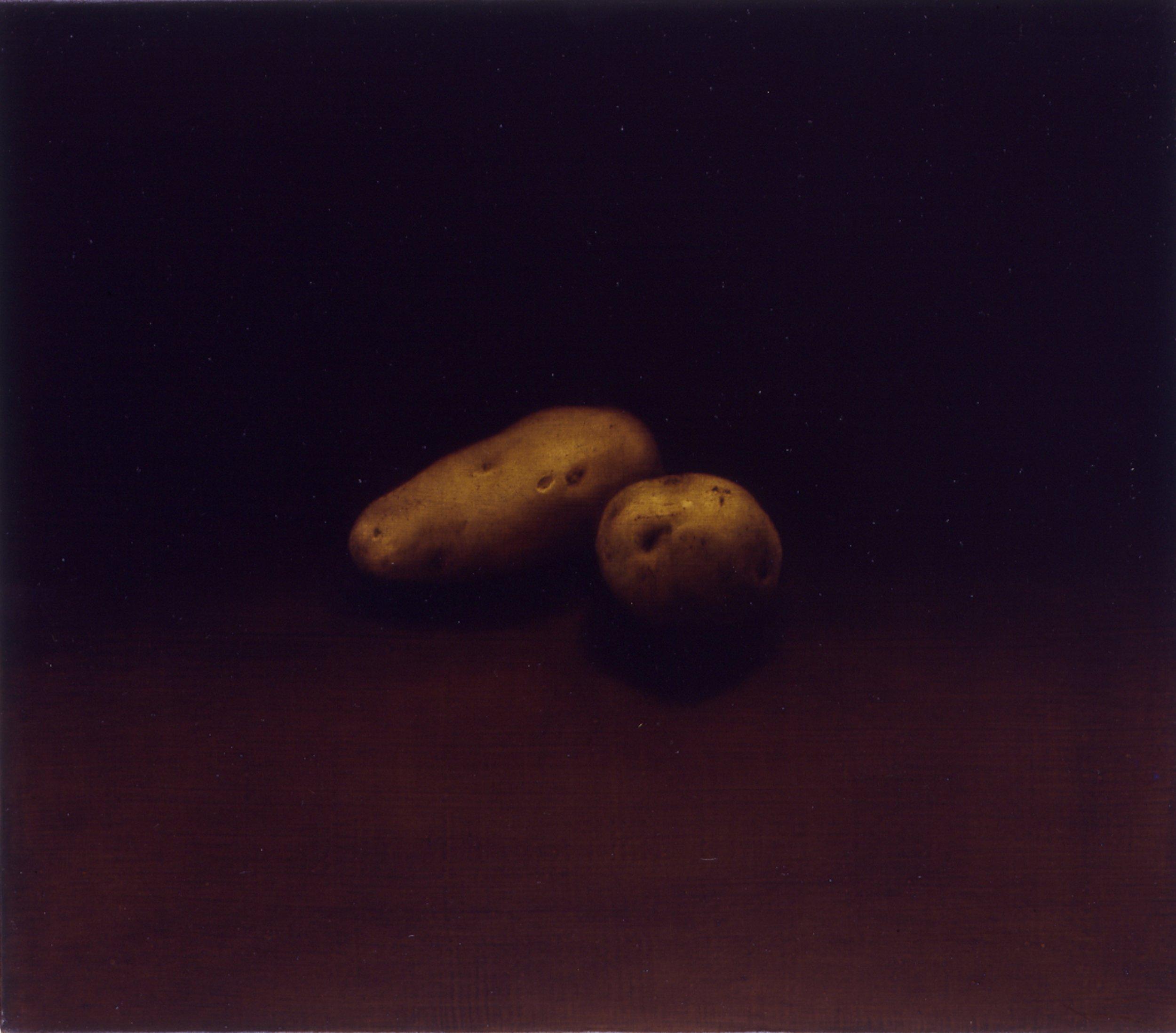 Two Potatoes, 1992, 14x16, oil/linen
