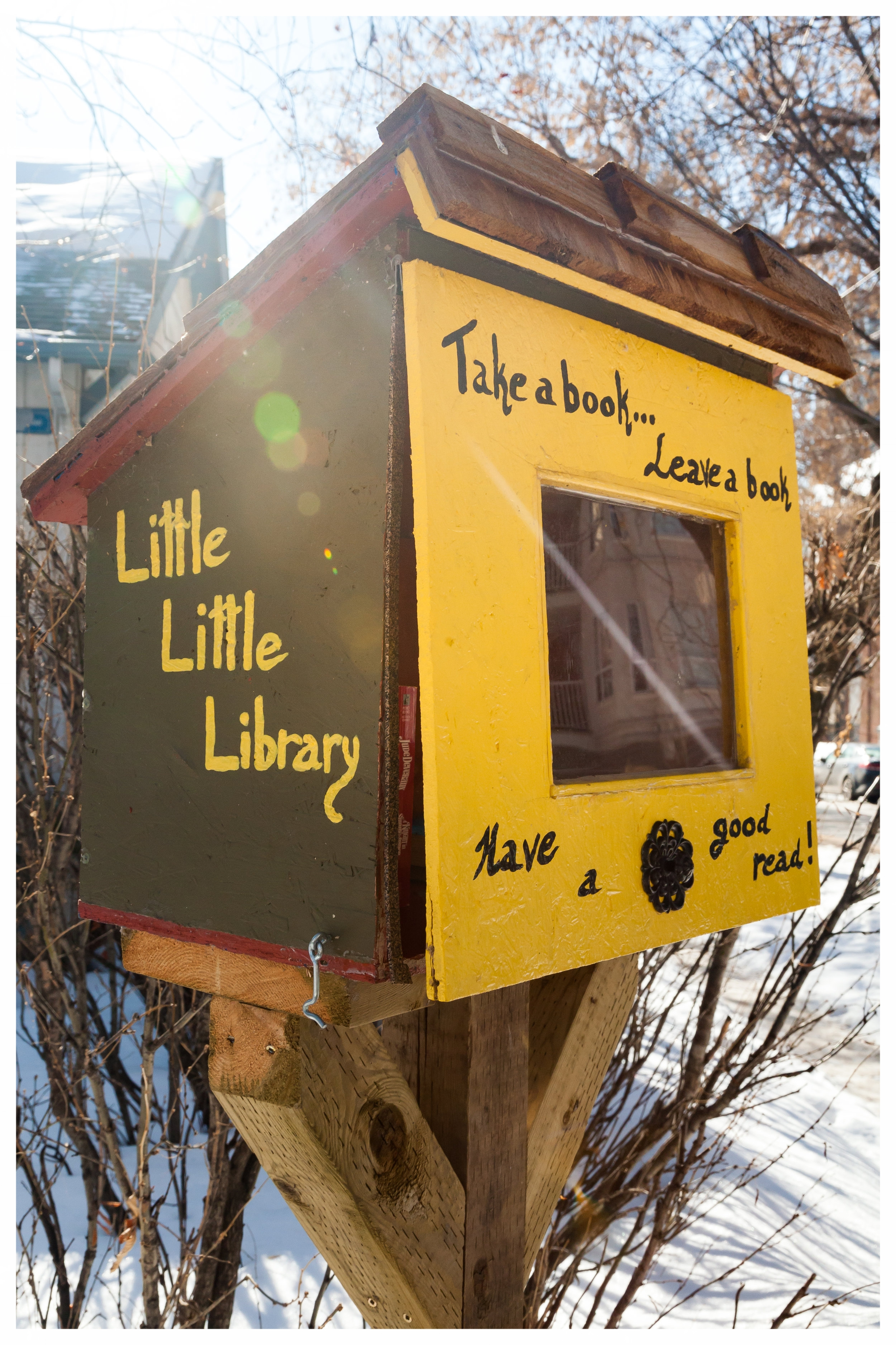 The Little Little Library on 110th Street and 86th Ave.