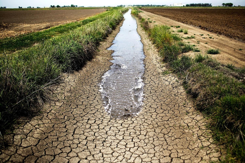 drought_3.jpg