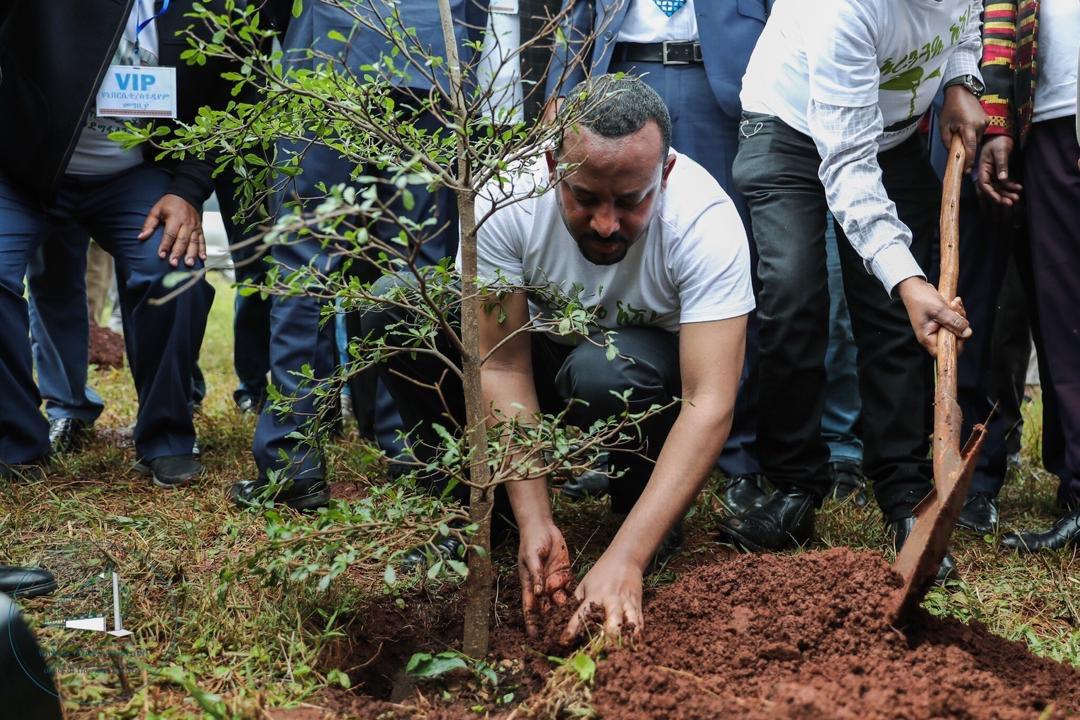 Abiy-planting-trees.jpg
