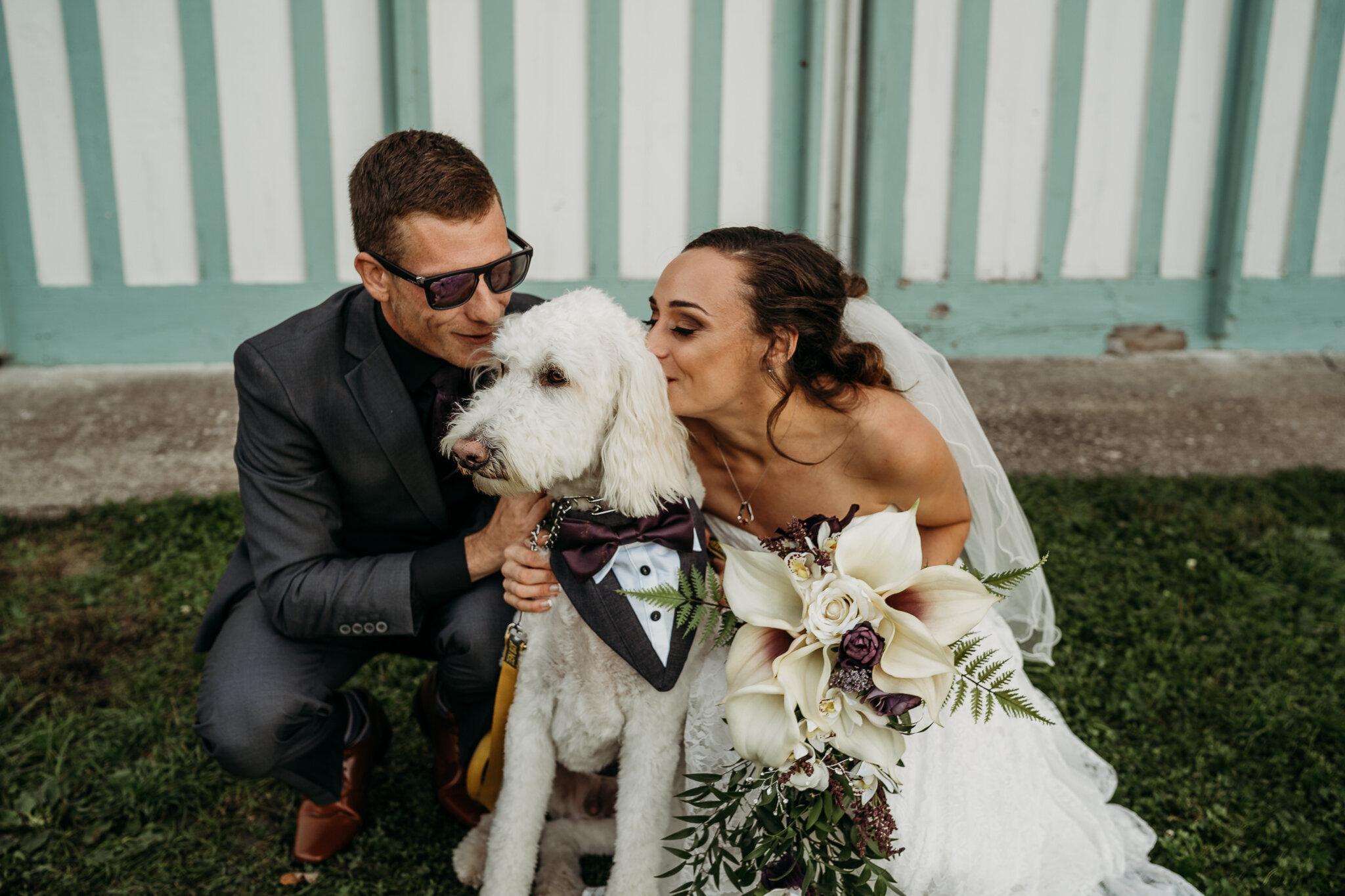Amanda + Eric Wedding Cobblestone wedding barn -01930.jpg