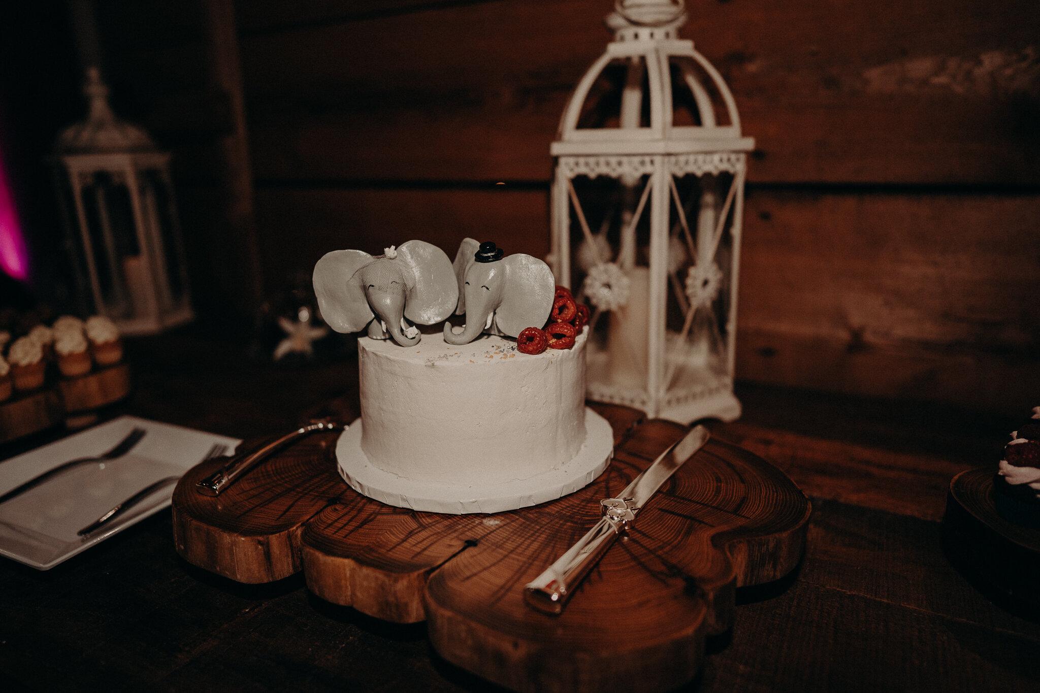 Amanda + Eric Wedding Cobblestone wedding barn -01639.jpg