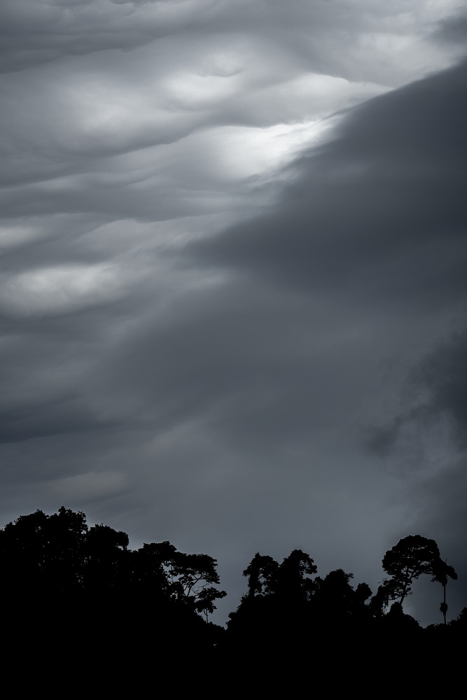 5. Clouds like cotton