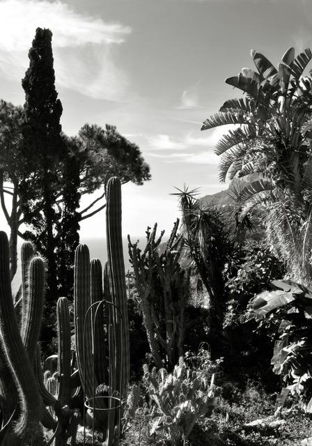 View from via Tragara Capri ©Reina.jpeg