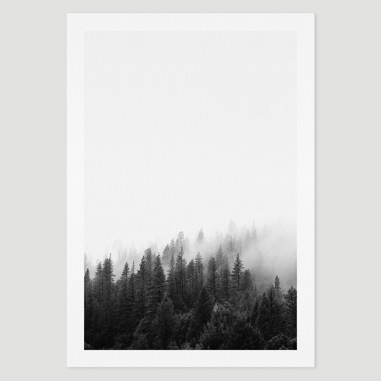 prints_forest.jpg