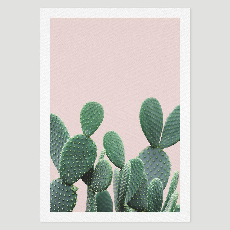 prints_pinkcactus.jpg