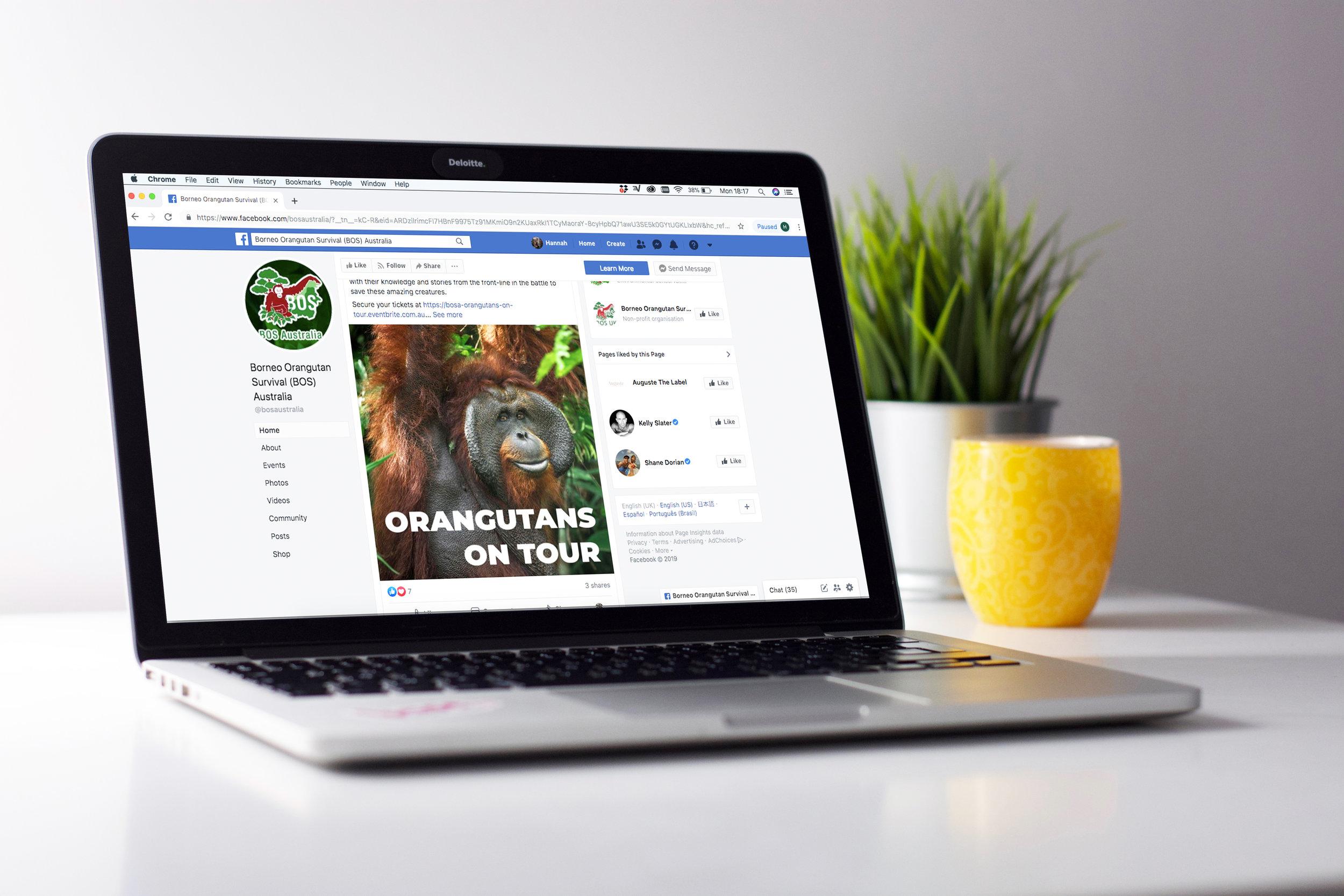 Facebook design BOS Australia