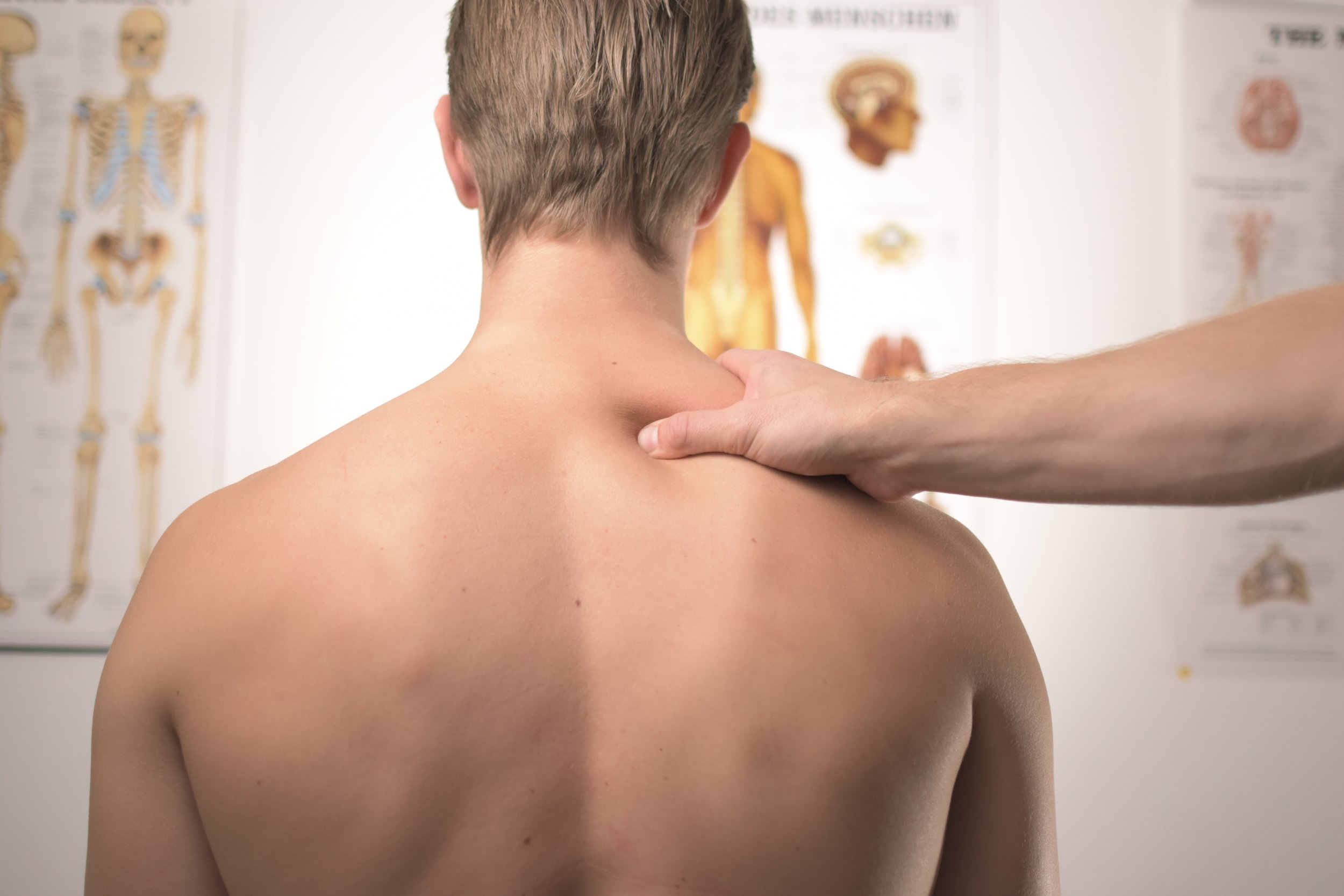 "- Your cervical spine (neck) supports and protects some very valuable cargo, your brain, brain stem, and spinal cord. Because of this fact you would assume that neck would be very stable and stiff, instead, the neck needs mobility in order for your eyes to work to the best of their ability. But if you've ever woken up with a ""crick"" in your neck, you know how bad it feels when your neck is stiff. The neck is similar to the Lumbar Spine, joints in the back and a disc for cushion in between each vertebrae. Pain is caused by immobility, but immobility can be caused for a variety of reasons including Osteoarthritis, Bulging Discs, and Tempromandibular Dysfunction.Neck pain can also present in many areas:HeadacheShoulder BladeArmHandThroatUpper chestGeneral stretching and maintaining good posture are ways to prevent neck pain, but if you already have neck pain then you need corrective techniques/exercises/stretches specific to your problem.If you have any of these symptoms, let us know in the form below and we will contact you about ways to help."