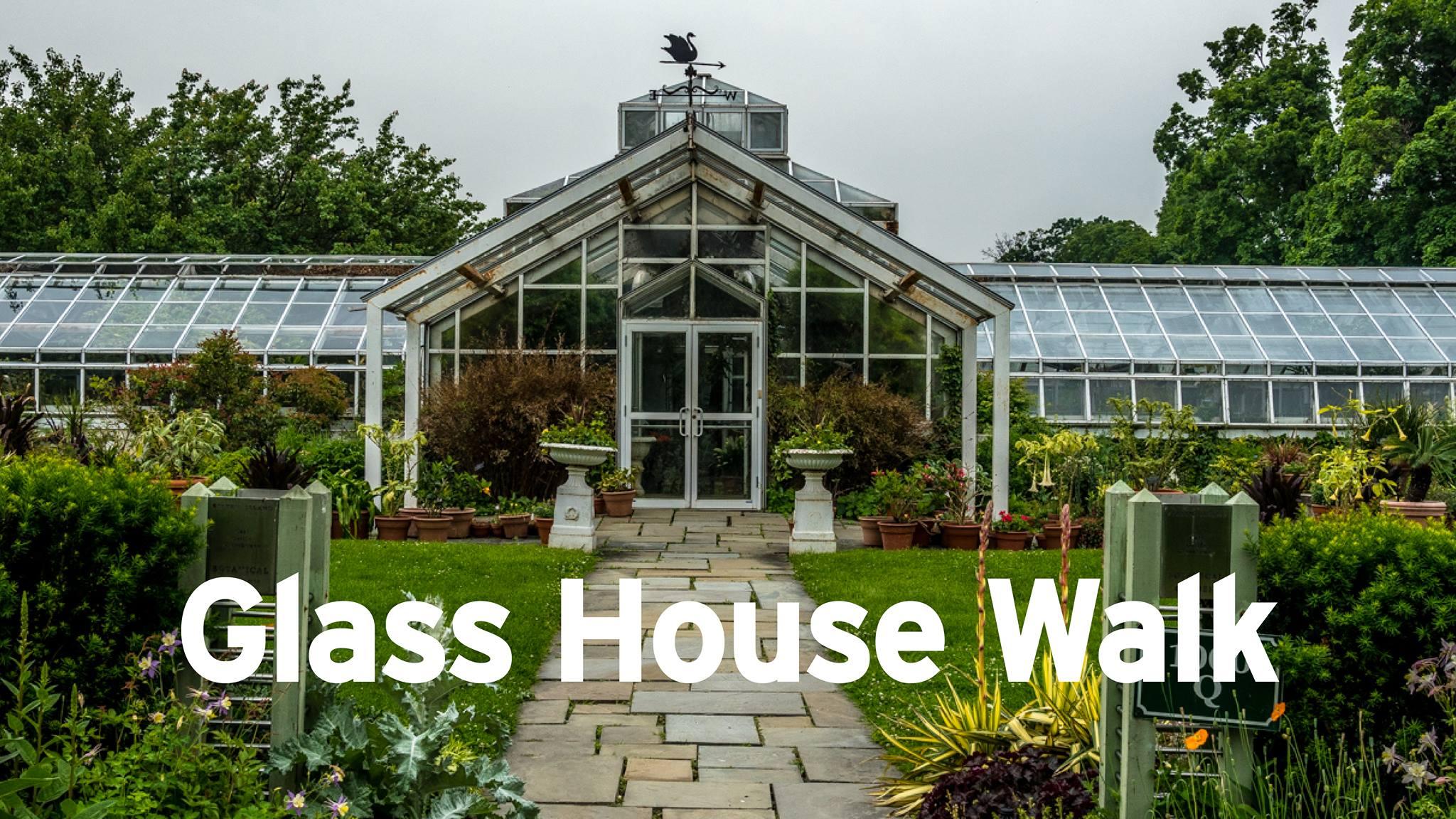 Glass House Walk.jpg