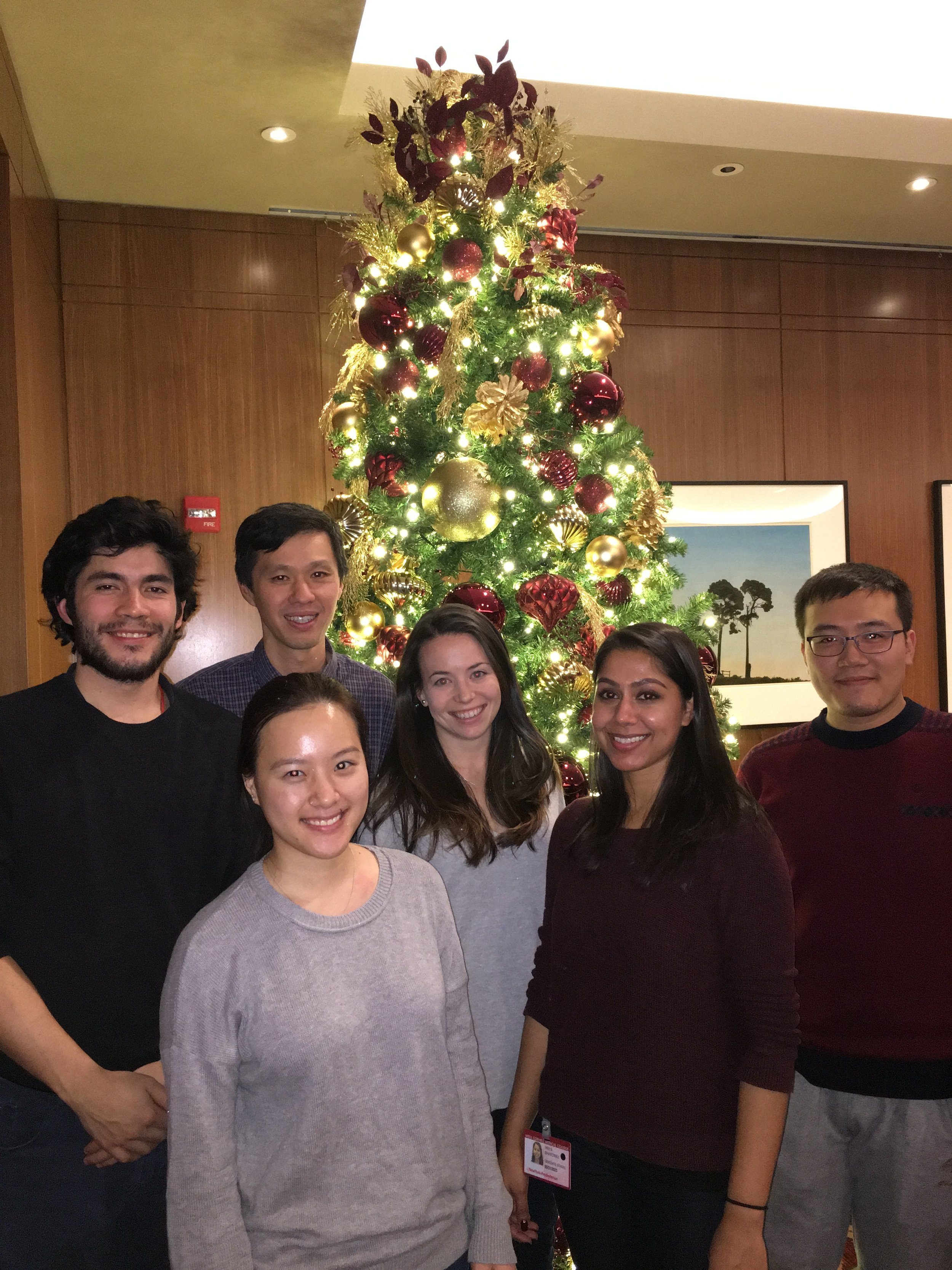Jill Roberts Institute Holiday Party 2016