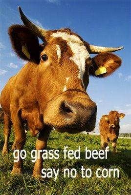 GrassFedCow2.jpg