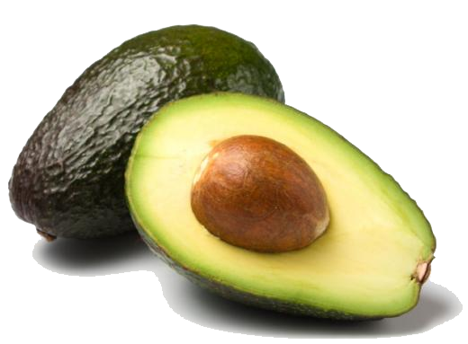 Avocado-e1507050427362.png