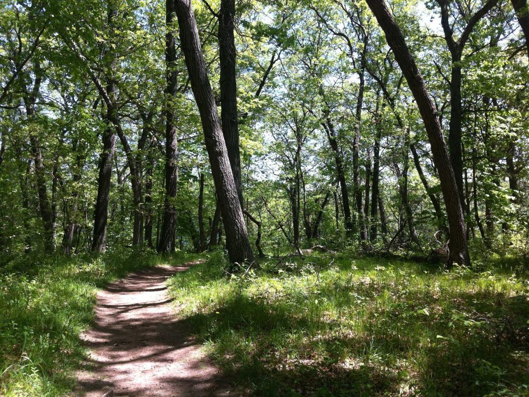 Holzinger Lodge Trail