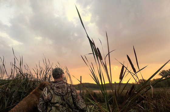 hunting_waterfowl_MnDNR.jpg