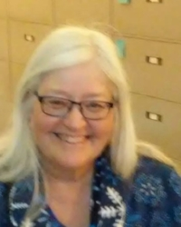 Paula Povilaitis, Assembly District 32 (Democrat)