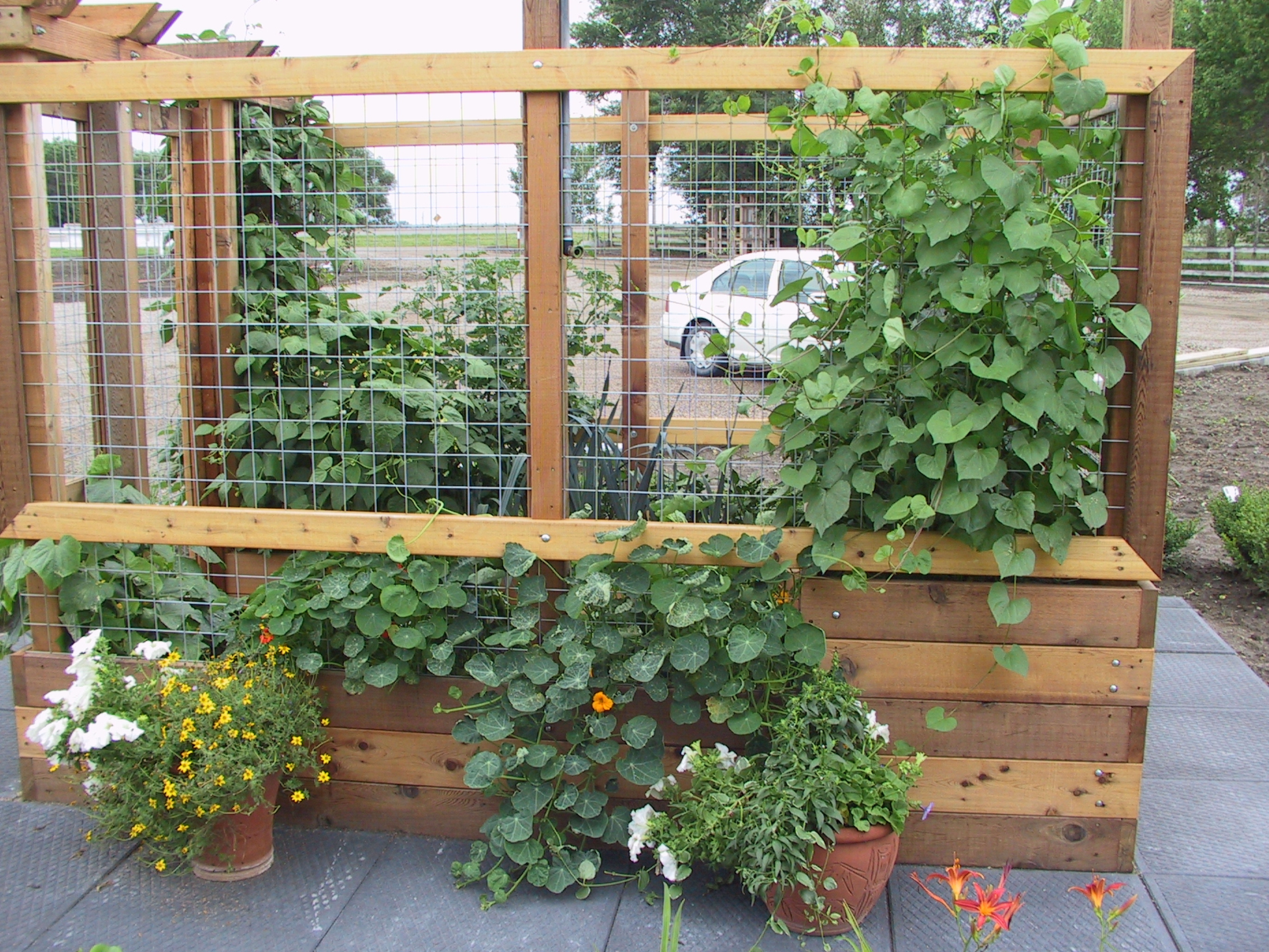 Vegetables Gardens Can Be Beautiful Too Hilgersom Inc