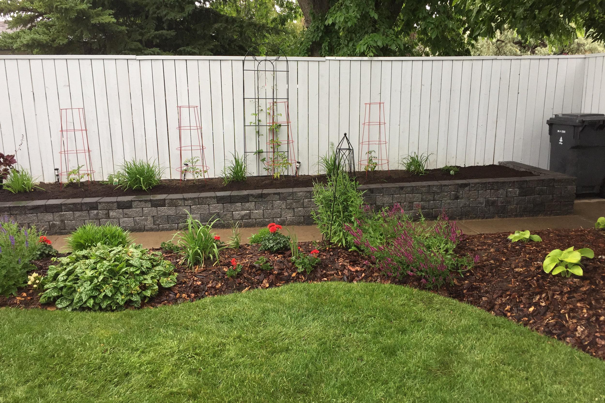 raised-planters-6.jpg