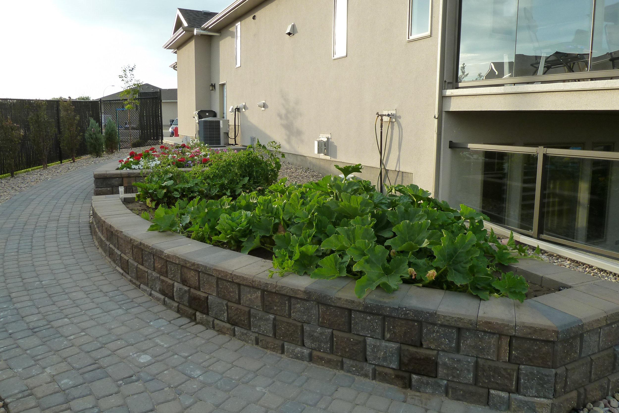 raised-planters-8.jpg