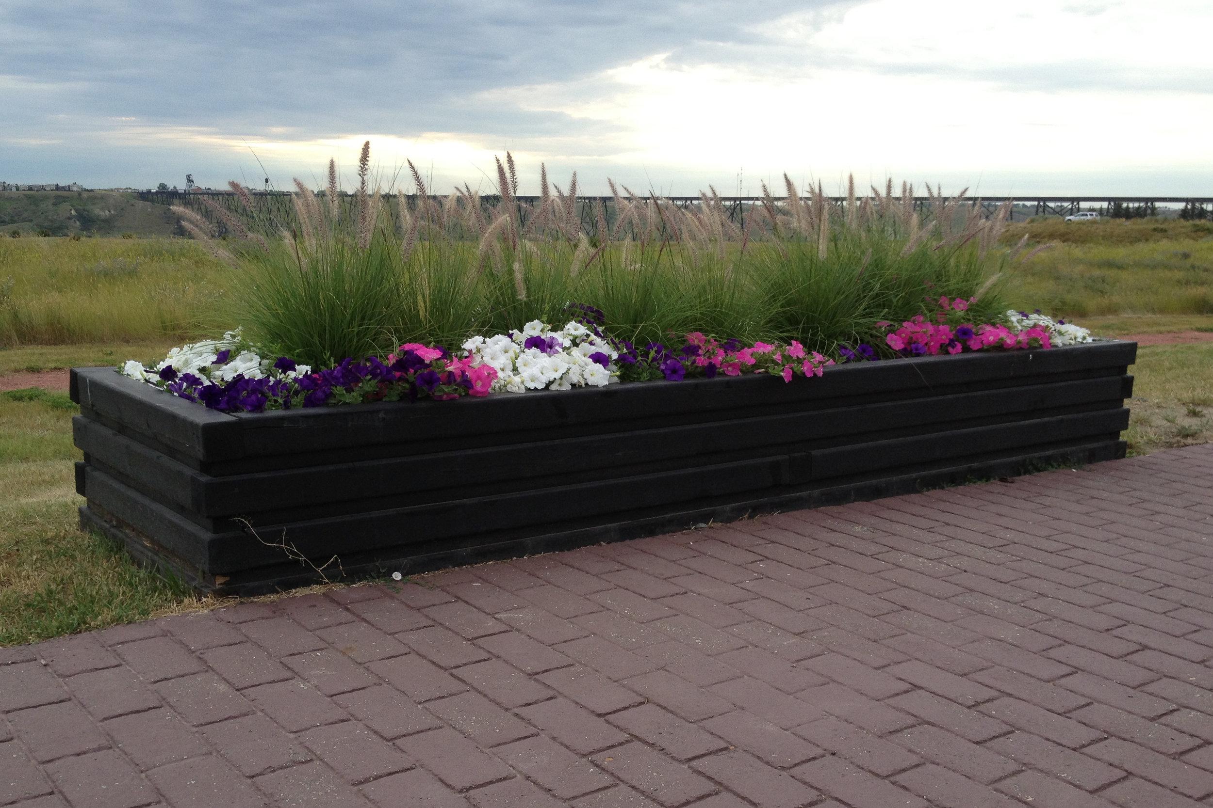 raised-planter-2.jpg