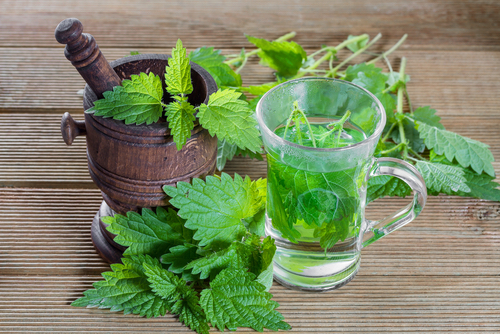 nettle_tea_for_menopause