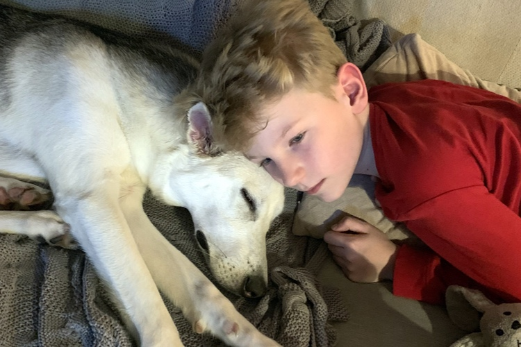 Adopting a dog has helped me find inner peace -