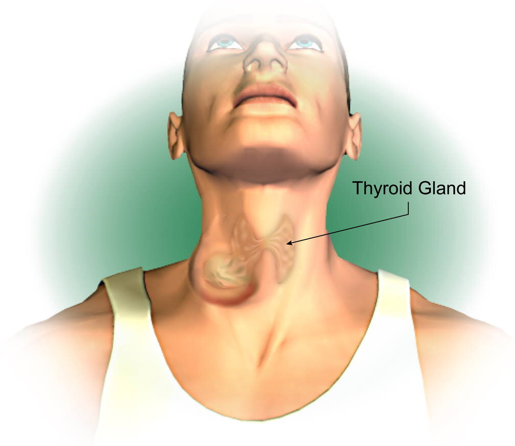 Thyroid Cancer Types Symptoms Diagnosis Treatment Pmcc