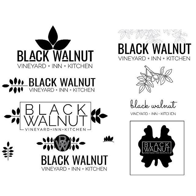 I was told that I need to show my process more often! I forget that the final product is cool, but the branding process is sometimes cooler ⭐️ I posted last week showing some of the branding and design projects I had done for the vineyard. Now here are a few of the brand concepts that I proposed. Some got more refined; others just got ditched. I'm only showing about one tenth of them!✨ Swipe to see the evolution to the final brand elements, which I then incorporated into a brochure design for context. 💫 Interested in branding work? Let's chat! 💕