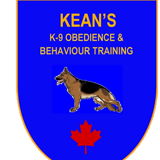 Chip Kean our Trainer in North Bay