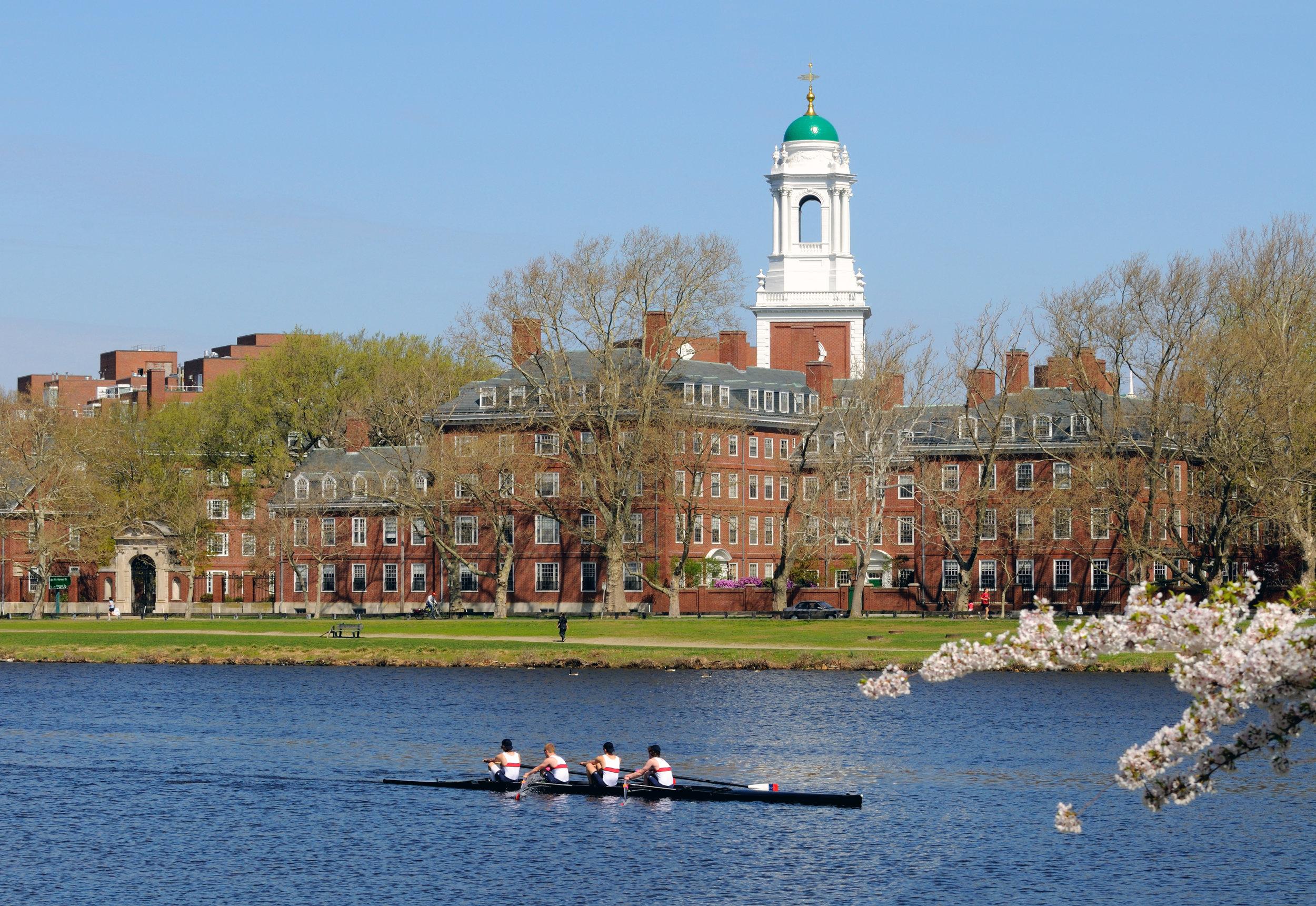 Harvard Lifestyle.jpeg