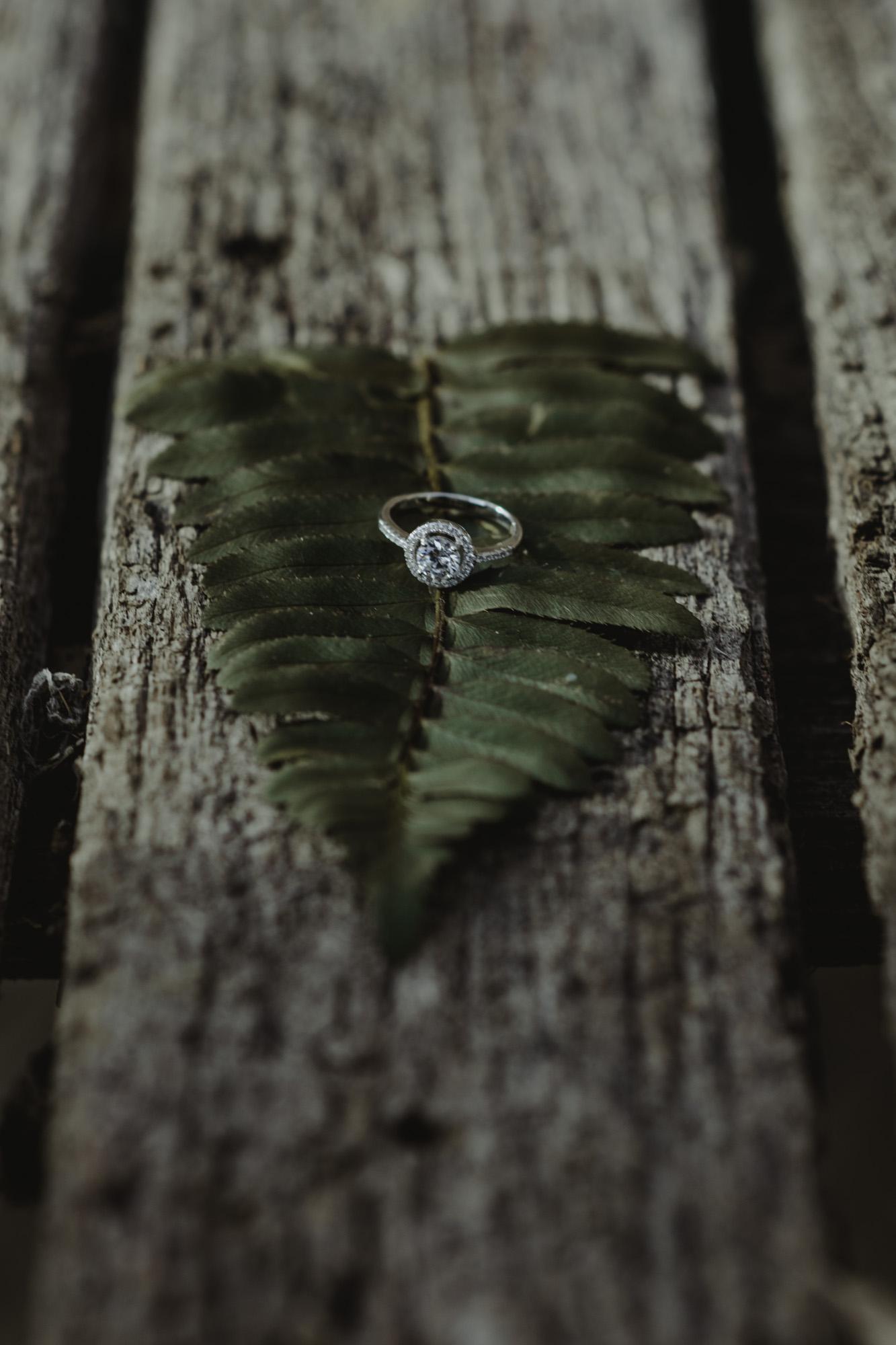 Cate_Ann_Photography_Dayton_Ohio_Wedding_Elopement_And_Engagement_PhotographerDSC_5688.jpg