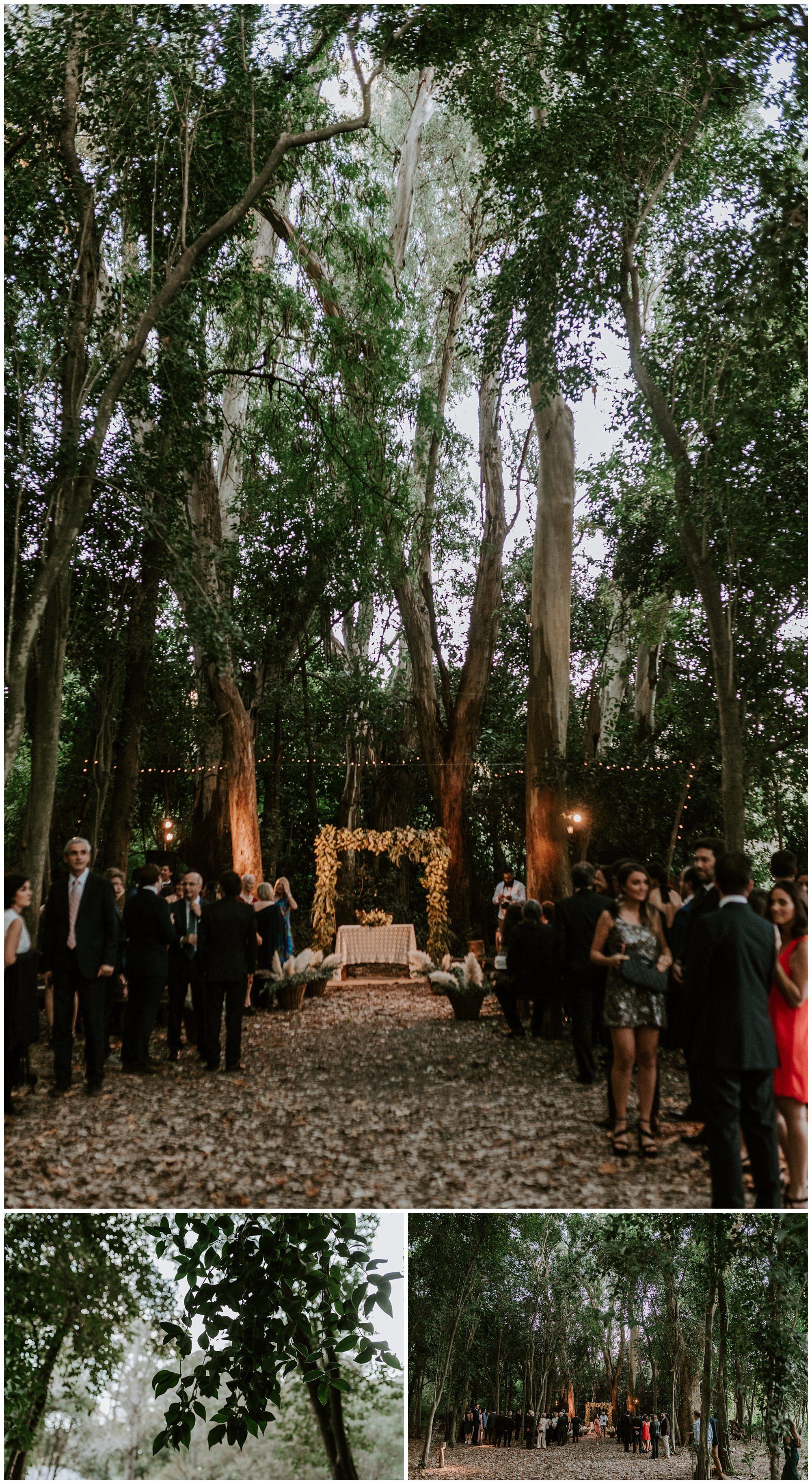 Photographer,fotografo, wedding,mauricio ,garay 12.jpg