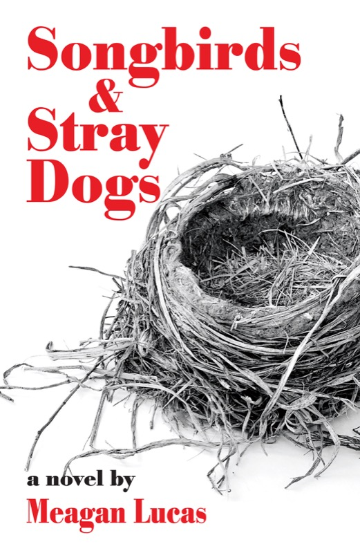 Song Birds and Stray Dogs