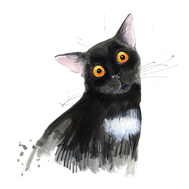 beckybrown-website-news-cat.jpg
