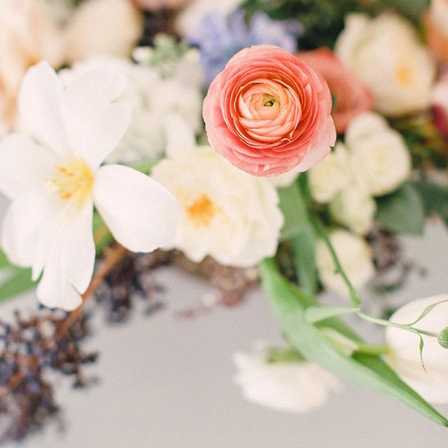 Flowers speak to my soul in a way nothing in my life has...except maybe food. Maybe it's color we are attracted to? In this arrangement a pop of coral, the #pantonecoloroftheyear2019! I always look forward to hearing what the trending colors will be in the floral, wedding, and fashion industries. Any guesses on what next year's will be?? . . . photographer | @tiffanyrebecca  styling | @satinandpine  florals | @emilyroseflorals . #coloradowedding #coloradoweddingphotographer #denverphotographer #vailwedding #vailweddingphotographer #tellurideweddingphotographer #aspenweddingphotographer #coloradoweddingflowers #coloradoweddingflorist #weddingflorist #girlwashyourface #communityovercompetition #fineartwedding #fineartweddingflorist #goldenhour #destinationweddings #coloradoweddingvendor #2020bride #flowerlove #liveflorally #creativepreneuer #pantone2019 #pantonecoloroftheyear #fortcollinswedding #fortcollinsweddingphotographer