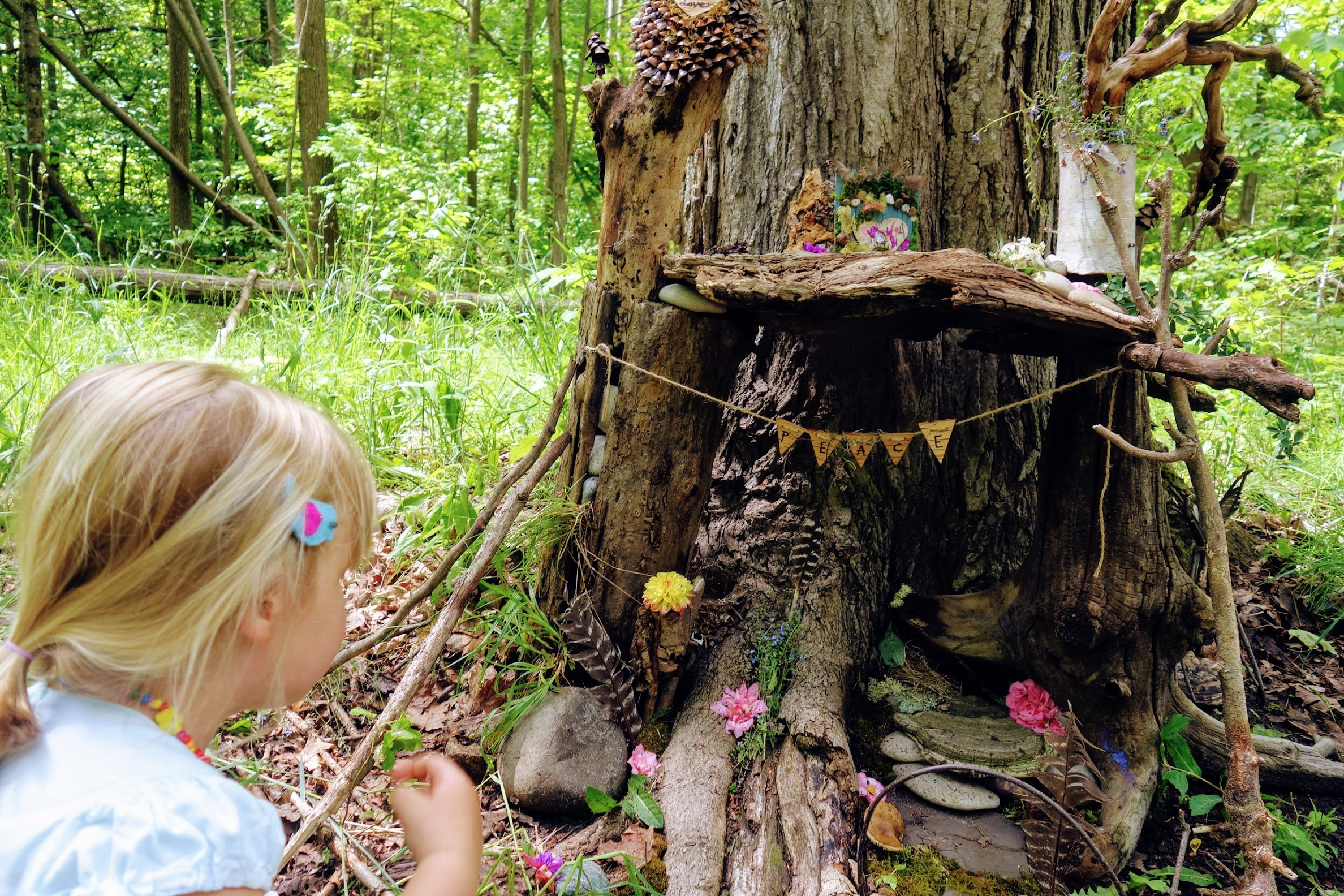 Fairy-fest-traverse-city-fairy-trails-life-and-whim.JPG