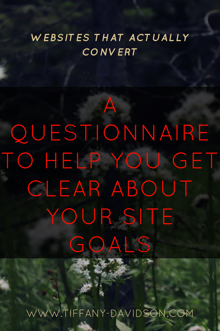 Websites That Convert A Questionnaire To Help You Get Clear ABout Your Site GOals.png