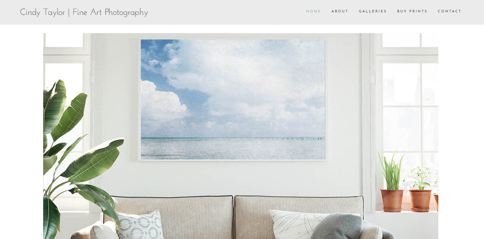 Squarespace photography portfolio website Squarespace web designer Squarespace SEO Squarespace Expert Tiffany Davidson Modern minimal website designweb design and SEO