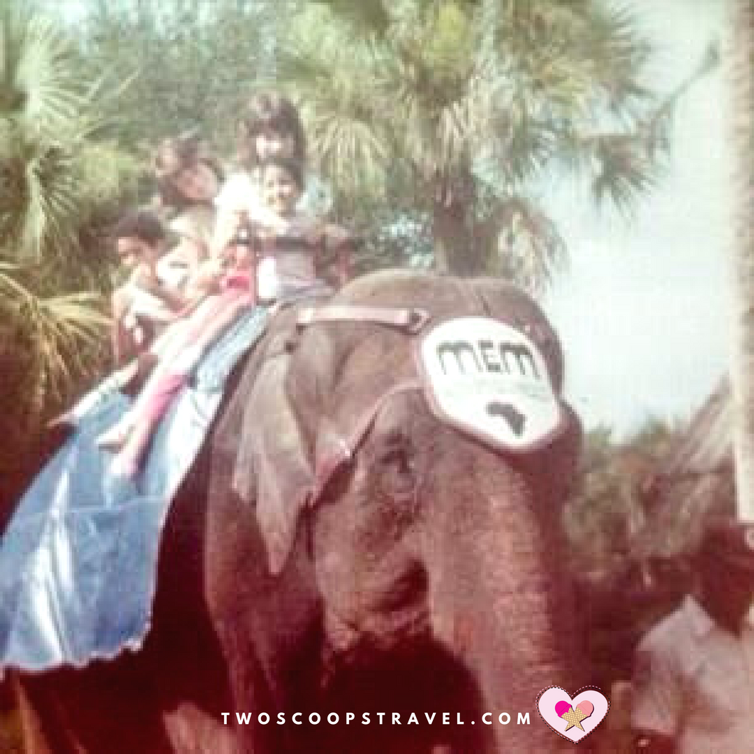 Busch Gardens in the 1980s
