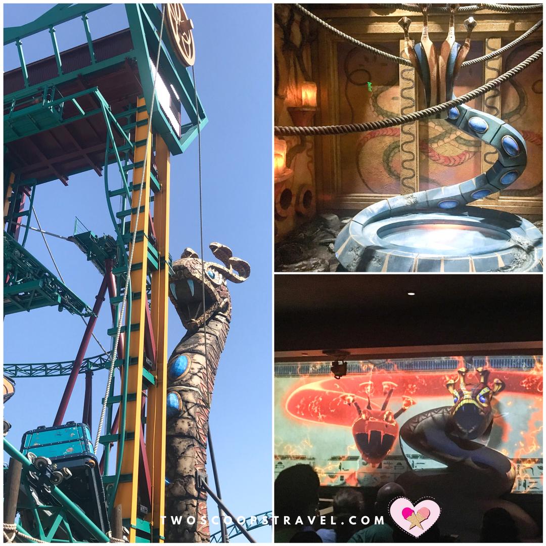 Cobras Curse Roller Coaster at Busch Gardens Tampa