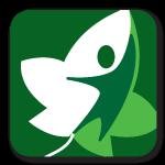 ivymount-logo4.png
