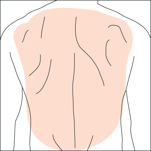 waxing-back.png